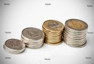 כסף שהתקבל מהלוואה קטנה למוגבלים